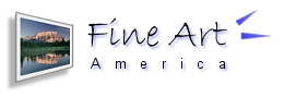 Fine Art America Button